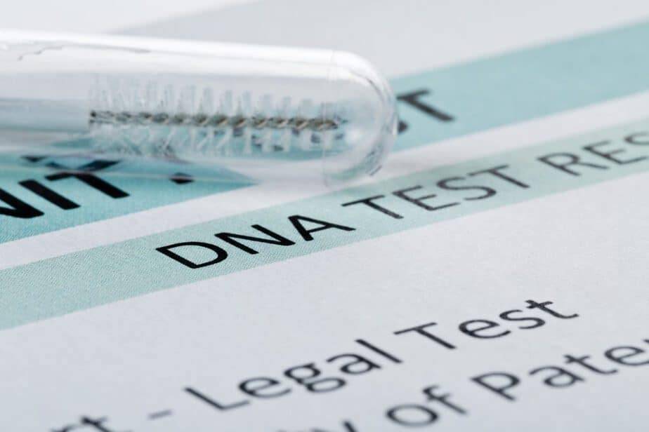 how to file for a paternity test in ny
