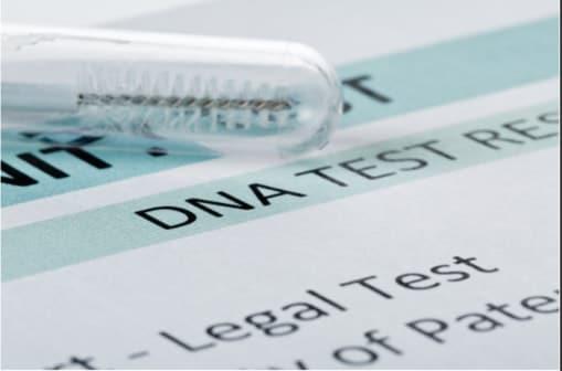 nys paternity testing laws idto